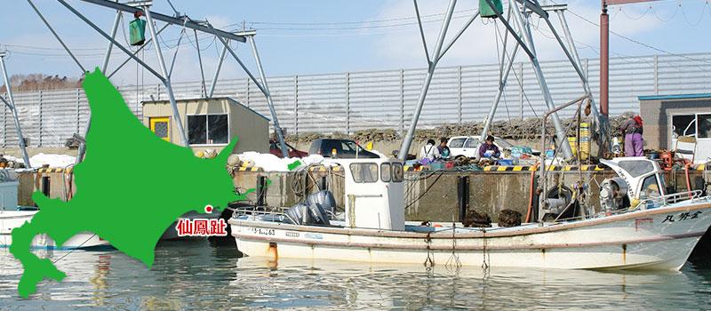 知る人ぞ知る北海道産牡蠣の名産地「仙鳳趾」