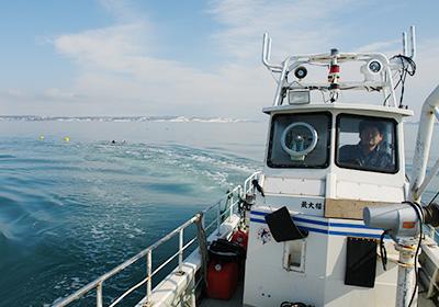 厚岸湾で行う牡蠣漁