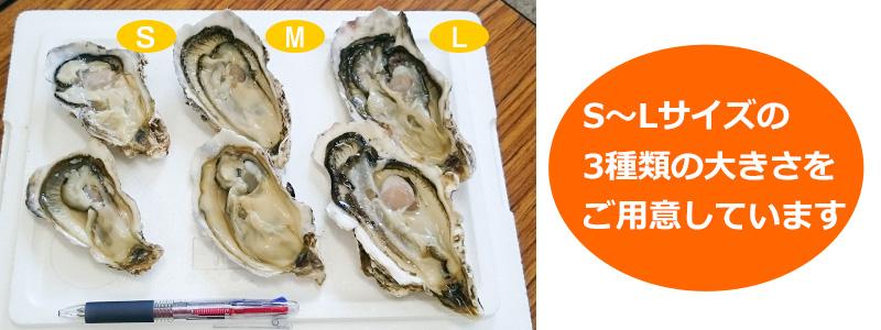 牡蠣はS~Lの3種類のサイズが選べます