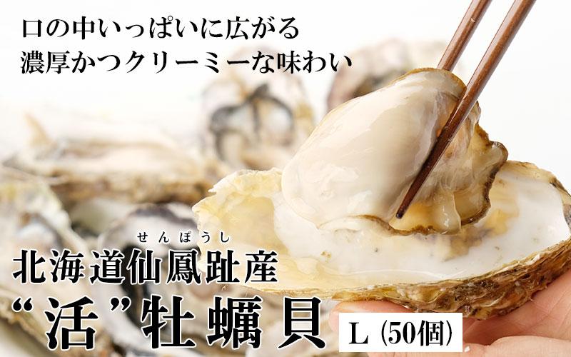 北海道仙鳳趾産「活」牡蠣Lサイズ×50個入