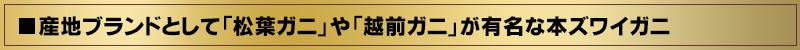 日本では産地ブランドとして「松葉ガニ」や「越前ガニ」が有名な「本ズワイガニ」