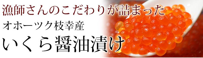 オホーツク枝幸産銀毛鮭いくら醤油漬