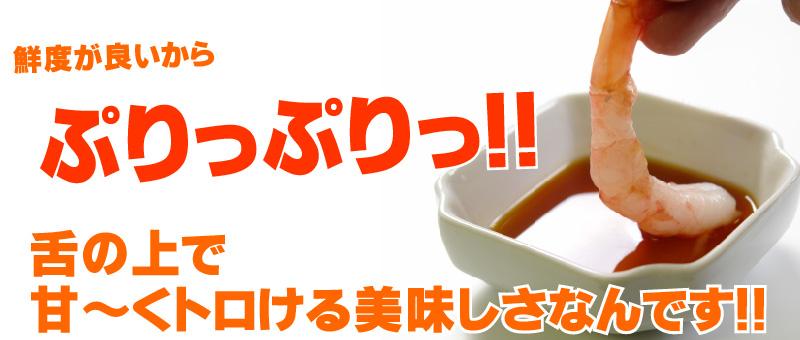ぷりっぷりのお刺身用日本海産甘エビ(甘えび)