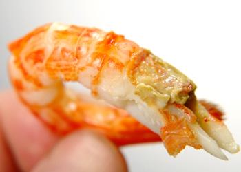 釜茹で北海シマエビの味噌も絶品です!