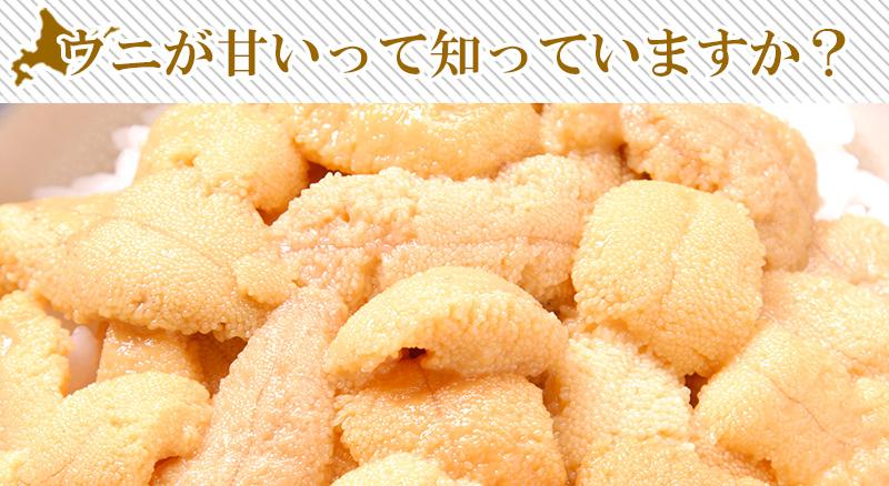 キタムラサキウニが甘い理由