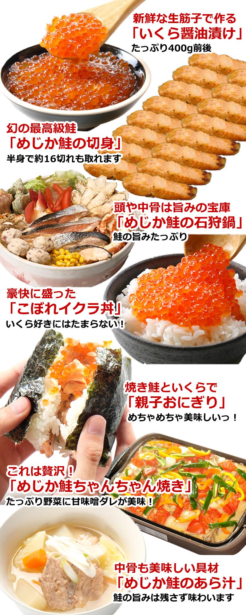 たくさんの鮭料理が楽しめます