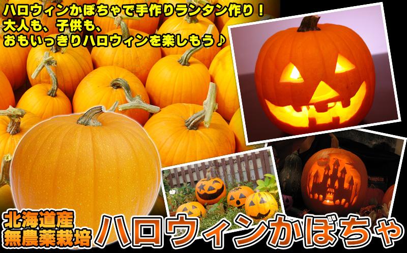 ハロウィンかぼちゃ2019
