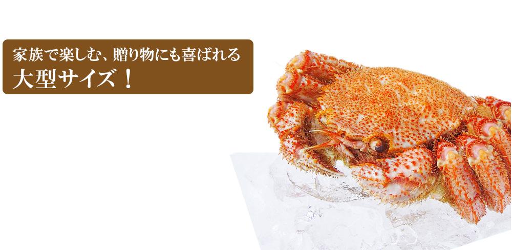 濃厚な味噌の毛ガニ