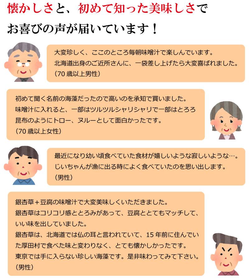 銀杏草3パックセット