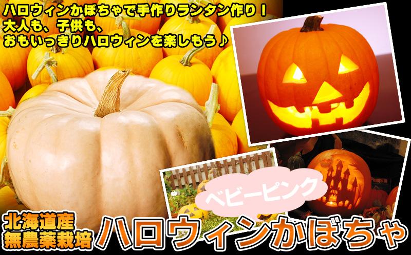 ハロウィンかぼちゃ2016