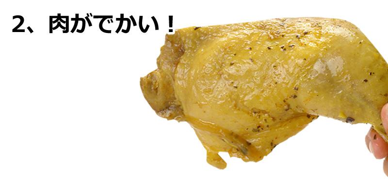 チキンレッグが丸ごと1本入ったスープカレー