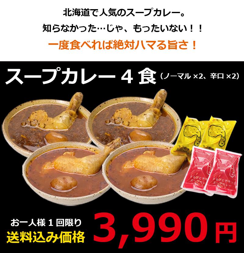 お試しスープカレー4食セット