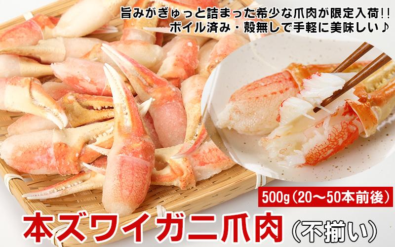 本ズワイガニ爪肉500g(不揃い)