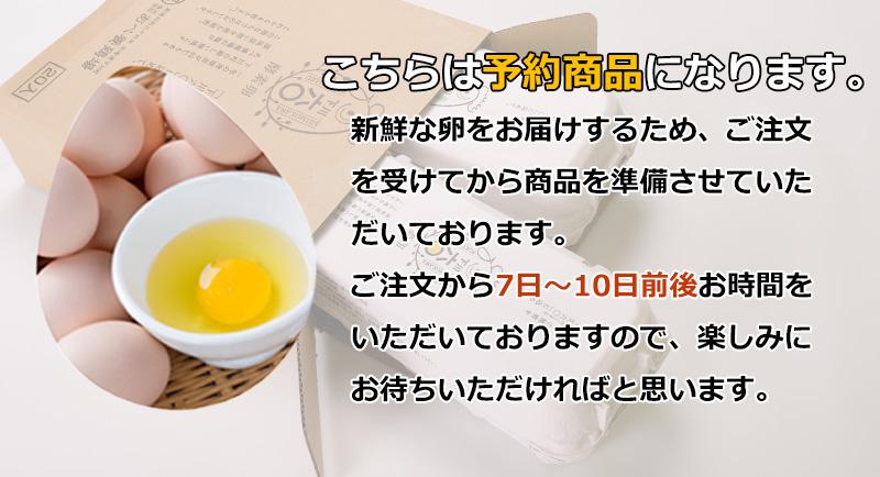 下川六〇酵素卵