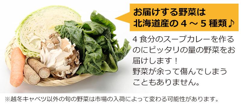 4~5種の野菜は使い残しなし