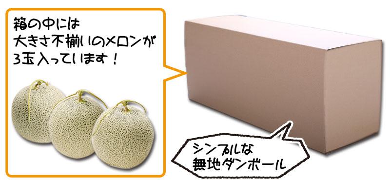 シンプルな無地の簡易箱でお届け