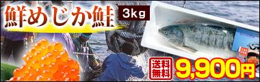北海道枝幸沖産「鮮」めじか鮭3kg<生冷蔵>