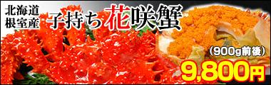 北海道根室産子持ち花咲蟹900g前後