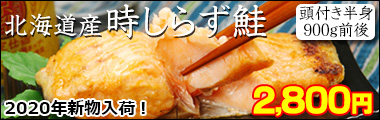 北海道産時しらず鮭半身900g前後(頭付き)