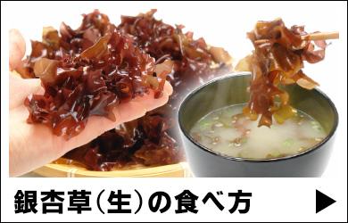 銀杏草(生)の食べ方(下準備、食べ方、保存方法)