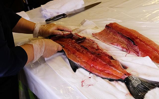 めじか鮭の身と骨を切り分けます。