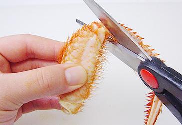 毛蟹の足のさばき方(関節から切る)