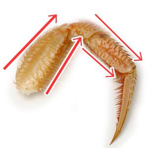 毛蟹の足のむき方