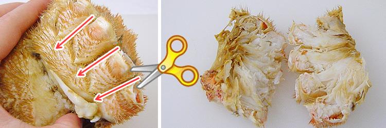 毛ガニの胴の筒を意識して切りましょう