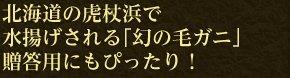 北海道の虎杖浜で水揚げされる「幻の毛ガニ」贈答用にもぴったり!