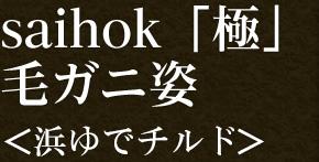 saihok「極」毛ガニ姿<浜茹でチルド>