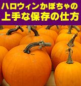 ハロウィンかぼちゃの保存方法