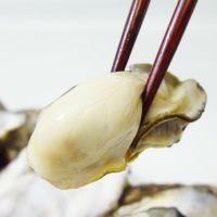 カンカン蒸し牡蠣2kg<生冷蔵>
