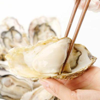 北海道仙鳳趾産「活」牡蠣Lサイズ×10個入