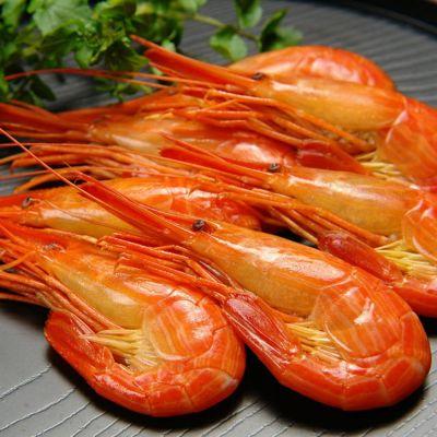 最北の海鮮市場×元気いただきますプロジェクト。北海道産のカニや海産物を送料無料でお届け